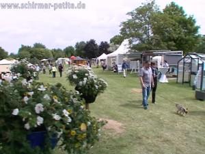 Petit Fleur in Hockenheim 2014 - Balsam für die Seele TVüberregional Döll TV