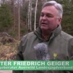 Fangjagd – Auerhahnschutz in BW
