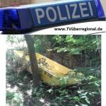 Zwei Verletzte und 10.000.- Euro Schaden bei Autounfall