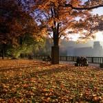 Ausflugstipp: Romantische Fahrradtour durch den goldenen Herbst