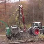 Sperrung L 600 Leimen zwecks Baumfällarbeiten