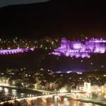 Politik & Gremien Gemeinsam für Heidelberg