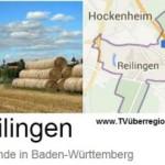 Termine Gemeinde Reilingen 29.01 — 05.02.2015