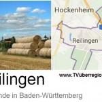 Termine Gemeinde Reilingen vom 2.2.17 bis 9.2.17