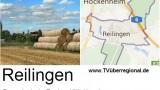 Termine Gemeinde Reilingen vom 28.05 bis 05.06. 2015