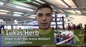 Box Arena Walldorf – internationale Veranstaltung – 2. BW Cup – Box Meisterschaften