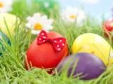Rewe Rimmler Reilingen wünscht frohe Ostern