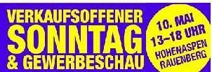 Gewerbeschau Rauenberg tvüberregional 300 x 100 px