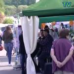 Maifest und Gewerbeschau in Dielheim 2015