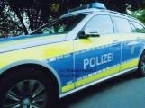 Reilingen: Wildschwein fährt in Fordfahrer