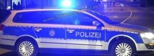 Reilingen - Kirrlach, Wildschweine tragen keine Warnwesten, Audifahrer übersieht Wildschwein und landet im Graben - LANGSAM FAHREN !!!