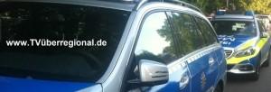 Wiesloch: Frontalzusammenstoß verhindert - Verursacher entfernt sich - Zeugen gesucht
