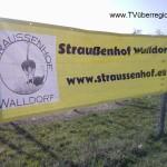 Walldorf Ausflugsziel – Straussenhof Walldorf – Straussenspezialitäten – Strausseneier – Straussenfleisch