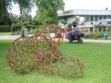 STADT HOCKENHEIM – Hybriden auf Wanderschaft – Kunst im Gartenschaupark