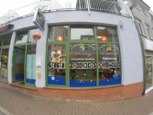 Wiesloch China Restaurant, Halong Wok, Asiatischer Schnellimbiss, Asiatische Spezialitäten Heidelberger Strasse 61, 69168 Wiesloch