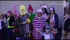Malsch Fastnachtsumzug 2017 - TVüberregional voll dabei - möchte jemand eine DVD ?