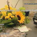 Autohaus Ranaldi – Frühlingsfest in Wiesloch gelungen – hunderte Besucher begeistert
