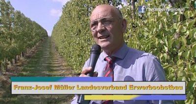 Franz Josef Müller Landesverband Erwerbsobstbau #freudensprung #obstbau #kraichgau #videoproduktion_döll #tvüberregional #politik #tv #cdu