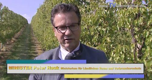 Minister Peter Hauk CDU #freudensprung #obstbau #kraichgau #videoproduktion_döll #tvüberregional #politik #tv #cdu