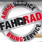 TARI BIKES WALLDORF FAHRRAD REPARATUR
