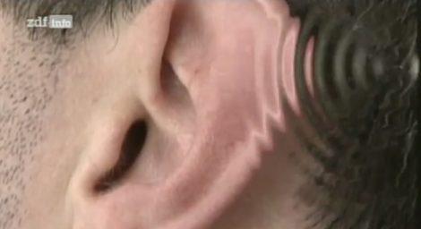 Medizin Video Thema Lärm – Lärm der nicht stört löst auch Bluthochdruck aus usw