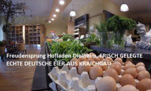 Freudensprung Hofladen Dielheim, FRISCH GELEGTE ECHTE DEUTSCHE EIER AUS KRAICHGAU