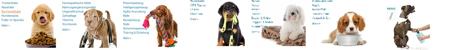 Hunde Zubehör, Hundezubehör, Hunde Pflege, Amazon, TVüberregional, Liebe zum Hund, Döll