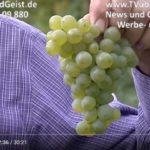 Obst und Geist Mühlhausen Klaus Rühl Winzer Kraichgau