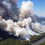 Großer Waldbrand bei Potsdam – Evakuierung von Fichtenwalde möglich