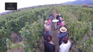 Edenkoben, Weinkontor, Tag der offenen Tür, mit Winzer unterwegs, TVüberregional, Pfalz Regional,