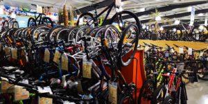IM WINTERRADFAHREN - Immunabwehr stärken: Tari-Bikes Walldorf
