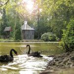 Eulbacher Park,Landschaftsgarten mit großem Erholungswert