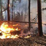 Rückblick auf den Waldbrand in Süd Hessen