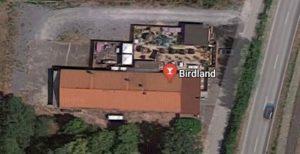 Birdland, Discothek in Kronau