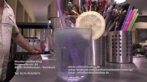 Cocktailmixbox, mobile Cocktailbar, Eventhighlight,