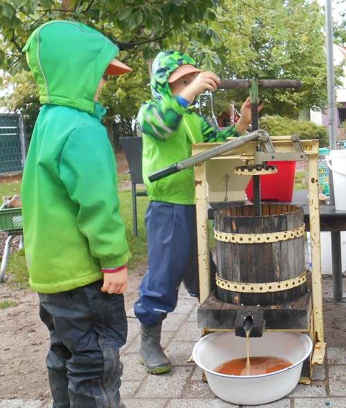 Von der Frucht zum Saft,Herbstzeit ist Apfelzeit. Der Südstadtkindergarten startete deshalb passend zur Jahreszeit und zu seinem Ernährungsprojekt mit seinen Vorschulkindern eine Apfelsaftaktion.