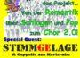 Samstag, 26.10.19 feiert Frohsinn Finale Men's Night im Gemeindehaus Baiertal, 19.30 Uhr, Eintritt frei
