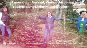 Tannenbaum Verkauf, Weihnachtsbäume bei Freudensprung Dielheim und Nussloch TVüberregional