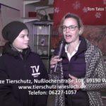 Filmbericht über das Tom Tatze Tierheim, Walldorf, mit dem wunderschönen Adventsmarkt