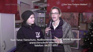 Tom Tatze Tierheim Walldorf, Adventsmarkt, TVüberregional, Fabian Kolb, Oliver Döll