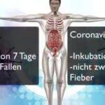 Aktuell 2020 Coronavirus, China, Militär sperrt Städte, Menschen fallen um, Angst, Hungersnot steigt