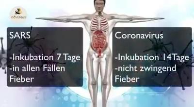 Coronavirus, China, Militär sperrt Städte ab, täglich fallen Menschen um, Angst und Hungersnot steigt, realer Horror 2020