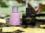 Vegas Cosmetics Beauty, Wellness Rabatte und mehr