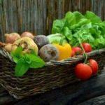 Gesundheit und Leben