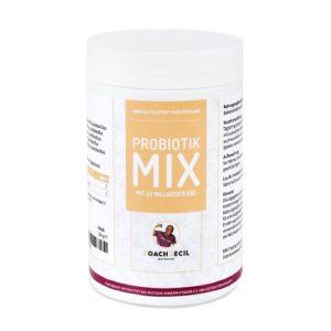 Probiotik Mix mit 50 Milliarden kbE