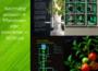 Lebensmittelgenießer dein Weg in eine grüne Zukunft
